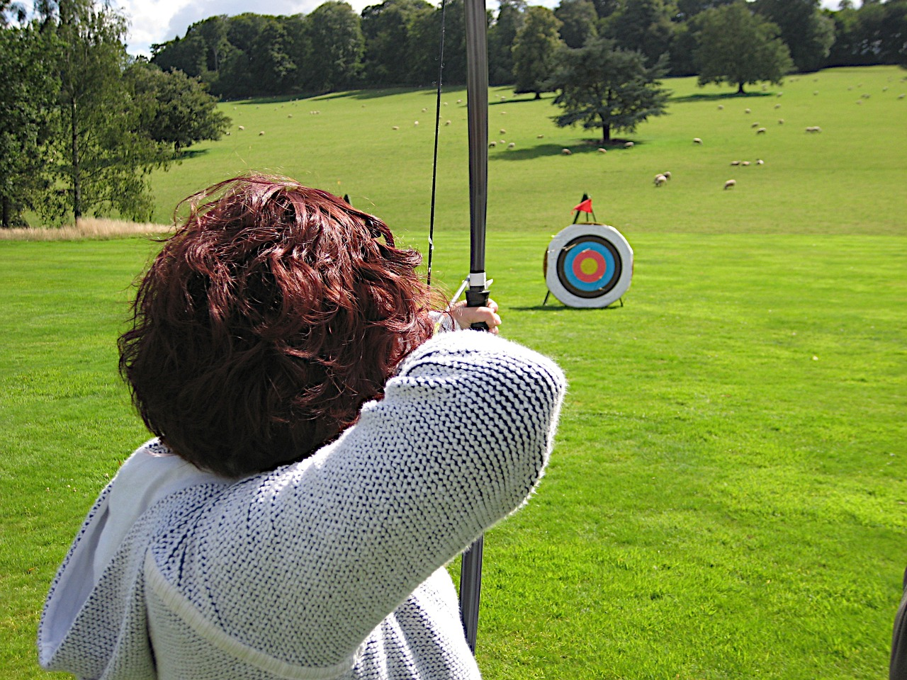 bows-and-arrows-650474_1280.jpg